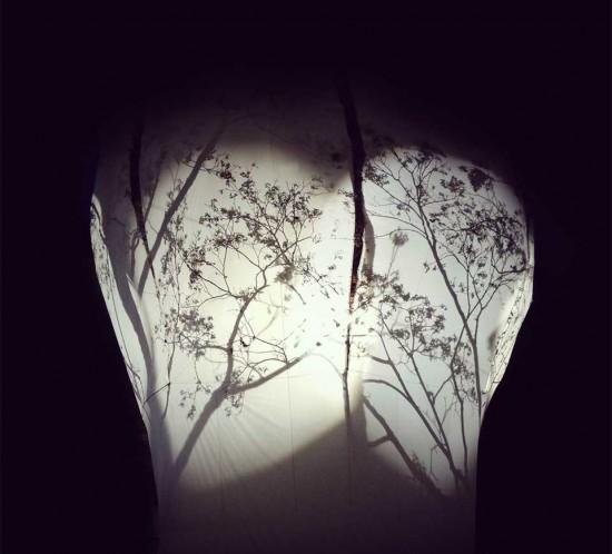 Arbre en Lumière, Genève, fleur d'arbre et ombres chinoises sur toile de soie